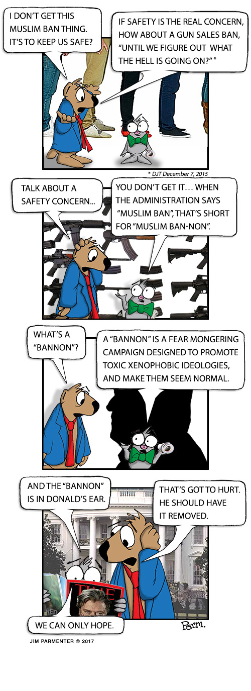 "I don't get this Muslim ban thing. It's to keeps us safe? If safety is such a real concern, how about a gun sale ban, ""Until we figure out what the hell is going on?"" Talk about a safety concern… You don't get it… When the Administration says ""Muslim Ban"" that's short for ""Muslim Ban-non"". What's a ""Bannon""? A ""Bannon"" is a fear mongering campaign designed to promote toxic xenophobic ideologies, and make them seem normal. And ""Bannon"" is in Donald's ear. That's got to hurt? He should have it removed. We can only hope."